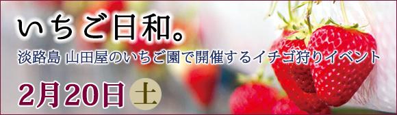 いちご日和。2月20日(土)淡路島山田屋のいちご園で開催するイチゴ狩りイベント