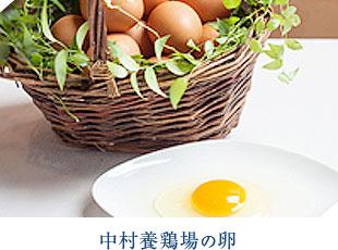 中村養鶏場の卵