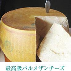 最高級パルメザンチーズ