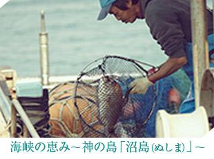 海峡の恵み〜神の島「沼島(ぬしま)」〜